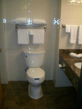 Drury Inn & Suites Amarillo: Drury Inn & Suites Hotel Bathroom