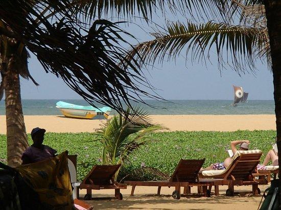 Jetwing Beach: Vue sur la plage