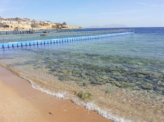 Domina Coral Bay Prestige Hotel : Spiaggia riservata alla clientela Prestige