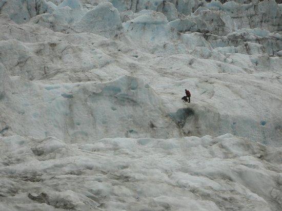 Franz Josef Glacier : shot of a guide digging
