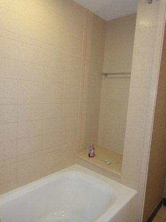 Hilton Garden Inn San Antonio Airport South : Shower/tub