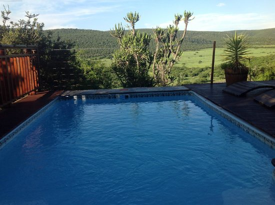 Addo Afrique Estate: kleiner Pool