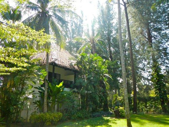 Haadson Resort : Coconut Rooms