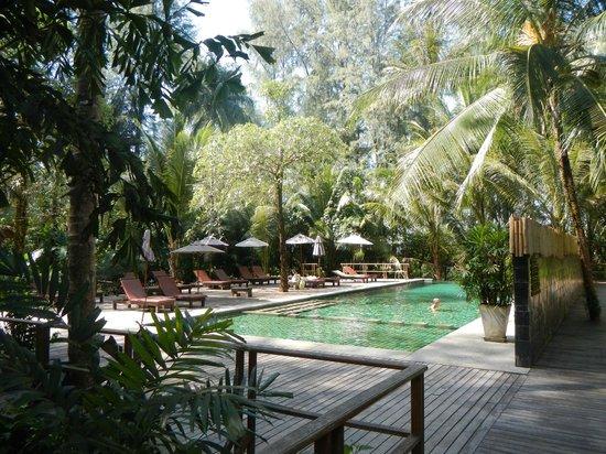 Haadson Resort : Pool