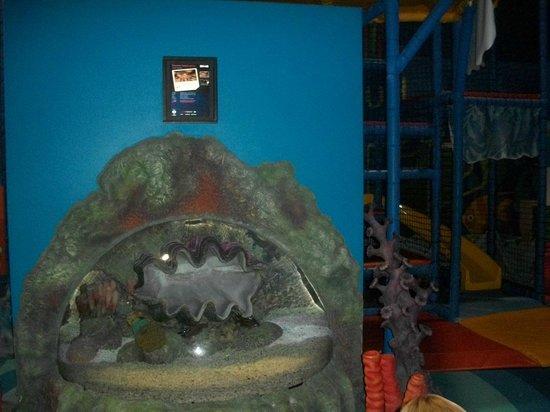Sea Life Aquarium Kids Play Area Fish Tank Picture Of