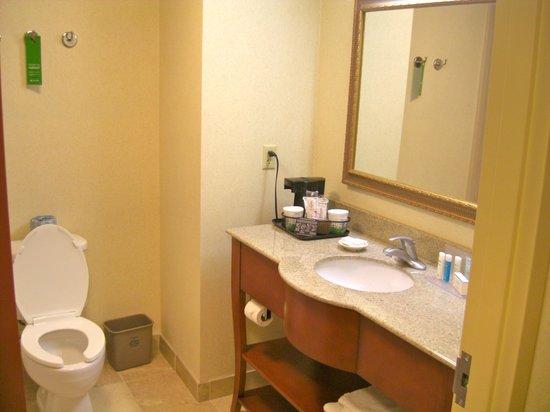 Hampton Inn & Suites Fort Myers - Colonial Blvd: Clean spacious bathroom