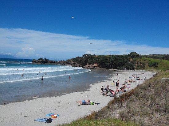 Tawharanui Regional Park: beach 3