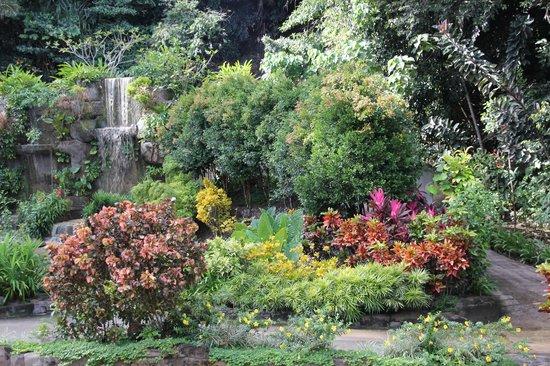 Bunga Raya Island Resort & Spa : Gardens