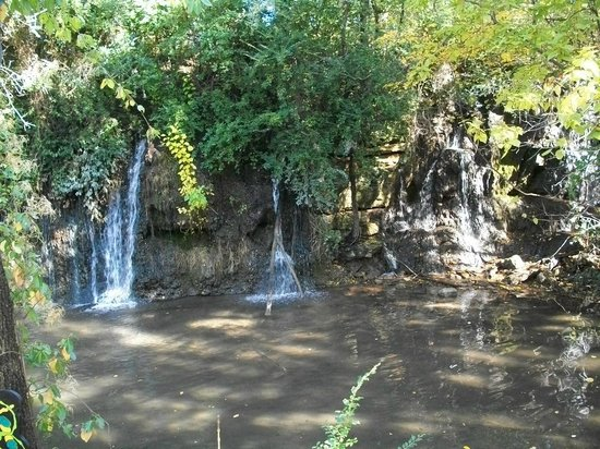 Dickerson Park Zoo Waterfalls