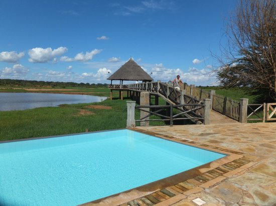 Voi Wildlife Lodge: la piscina...