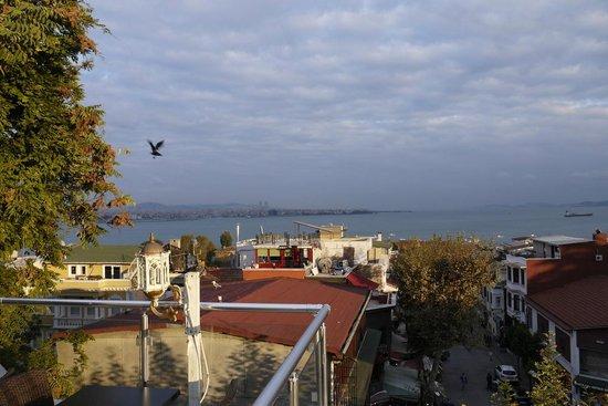 Charm Hotel: Вид на Босфор с террасы отеля