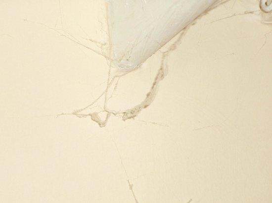 King Robert Hotel: nog een spinneweb