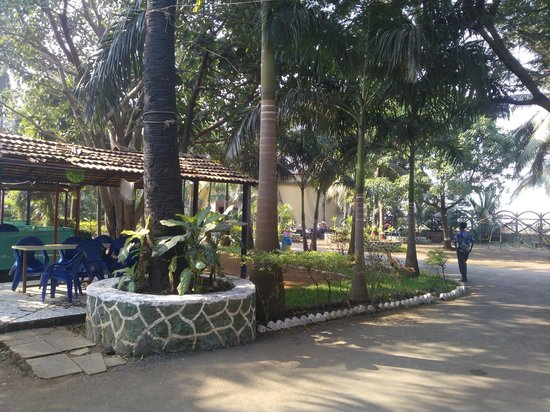 Pali Beach Resort: Grounds