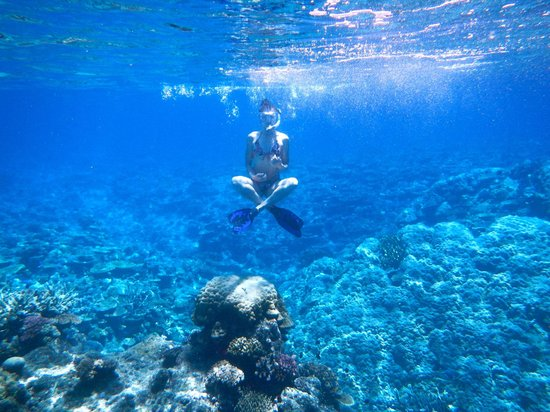 The Remote Resort - Fiji Islands: Rainbow reef
