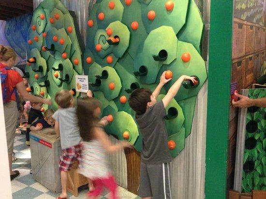 Miami Children's Museum : Atividade