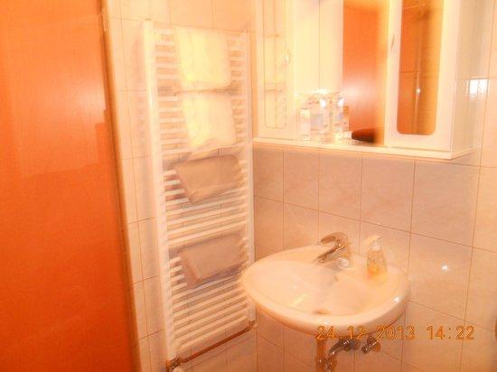 Apartments and Rooms Jozica: bagno