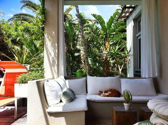 Cape Standard : Breakfast & chilling area