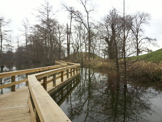 Toltec Mounds Archaeological State Park: The boardwalk over the banks of Mound Lake