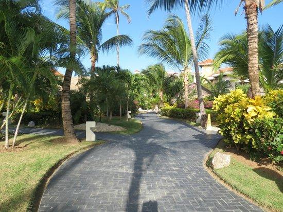Paradisus Palma Real Golf & Spa Resort : Paradisus Palma Real
