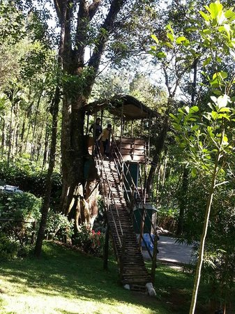 Blue Bells Valley Resort : Tree house @ Resort