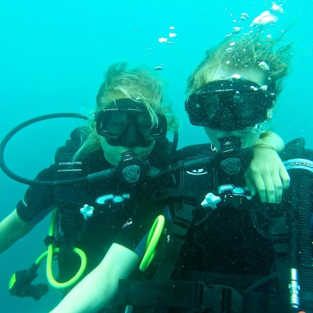 Pearl Divers: Fun Dives