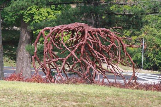Best Tree roots or art? - Picture of Laumeier Sculpture Park, Saint  YB72