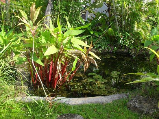 Phu Kamala Suites: Tropical gardens