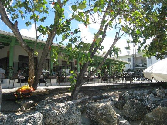 Mango Bay All Inclusive : Restaurant from beach