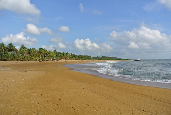 AVANI Kalutara Resort: Beach by hotel