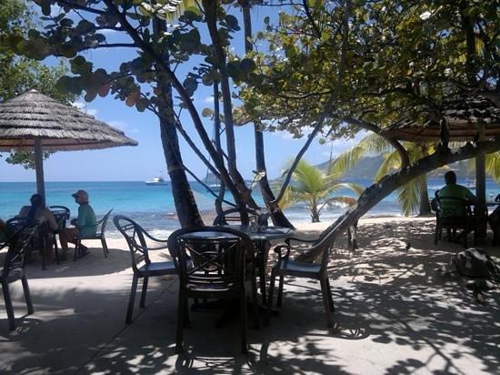 Palm Island: pranzetto in spiaggia!!