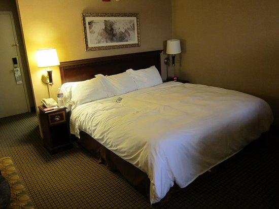Radisson Hotel Phoenix Airport : letto king