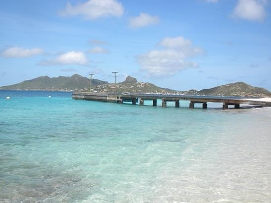 Palm Island: 💕