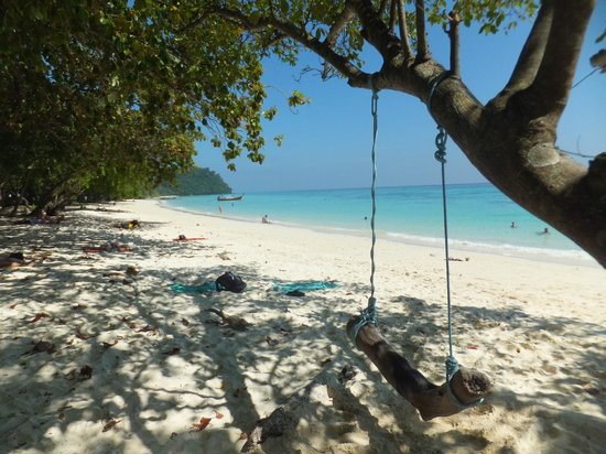 white powder sand - Picture of Ko Rok Nok, Ko Lanta - TripAdvisor