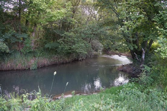 Côté Provence : The stream at the edge of the grounds