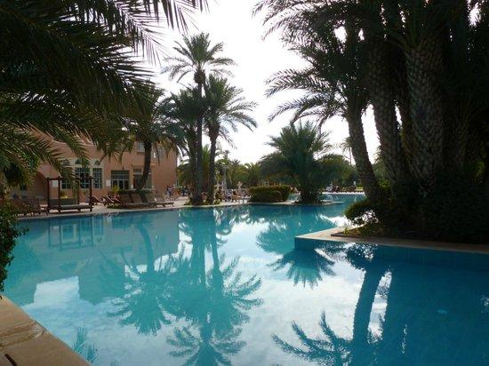 La Palmeraie : piscine
