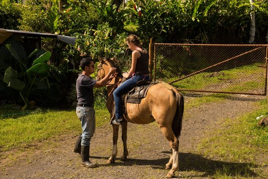 The Stable Arenal (El Establo): our girls enjoying the ride (and Carlos)
