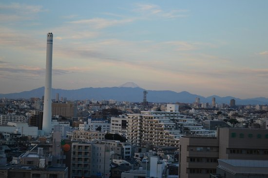 The Westin Tokyo : View from the room