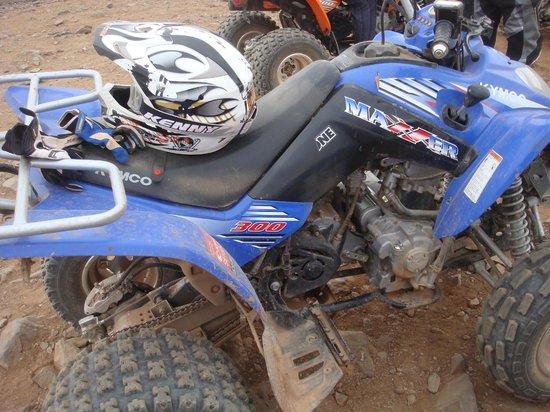 Marrakesh Quad : quad