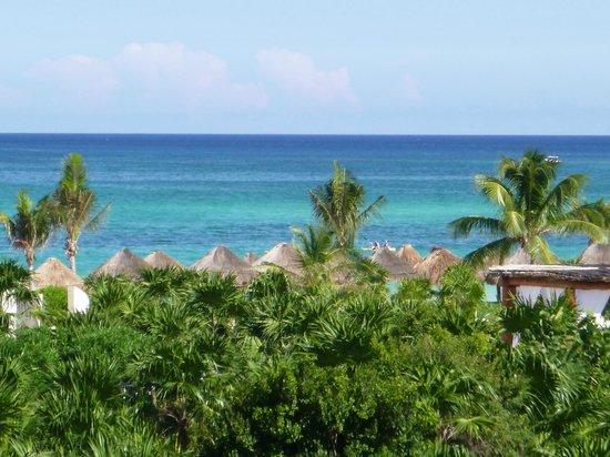 Secrets Maroma Beach Riviera Cancun: viewfrom the pool