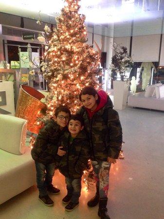 Hotel San Ranieri : Natale al San Ranieri