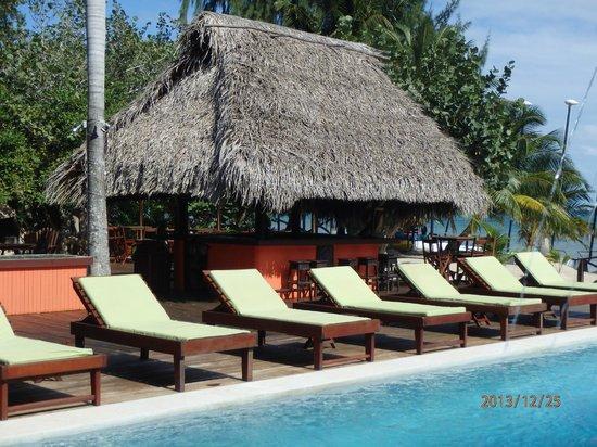Robert's Grove Beach Resort: endroit pour relaxer et se faire bronze