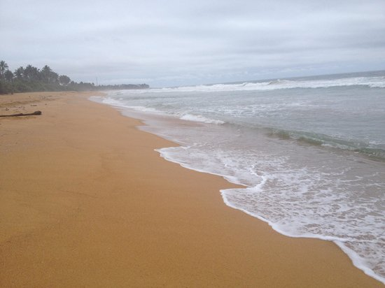 Aditya: Quiet stretch if beach