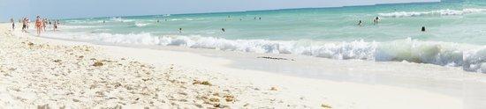 beach in front of viva wyndham maya