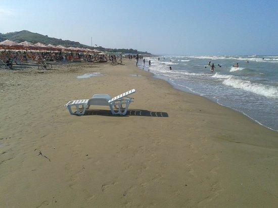 Albergo Cri Cri: la spiaggia a pochissimi metri