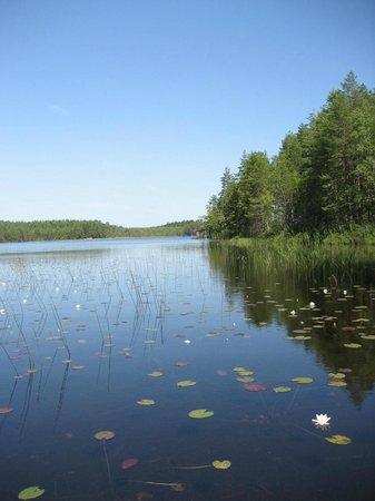 STF Kolarbyn Eco-Lodge : the lake