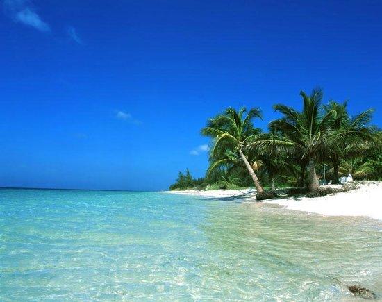 Hotel Cayo Levisa: la playa es así!!!