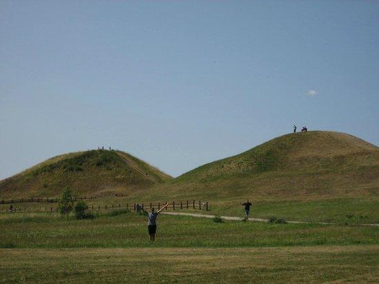 Alt-Uppsala (Gamla Uppsala): burial mounds