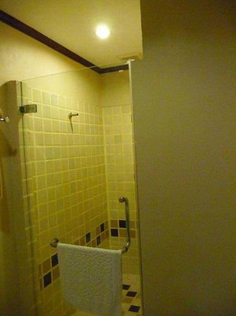 Hotel Villa Deux Rivieres: Badezimmer - Dusche