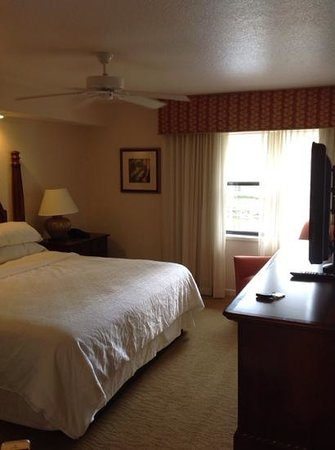 Sheraton Vistana Resort - Lake Buena Vista: Falls apartment