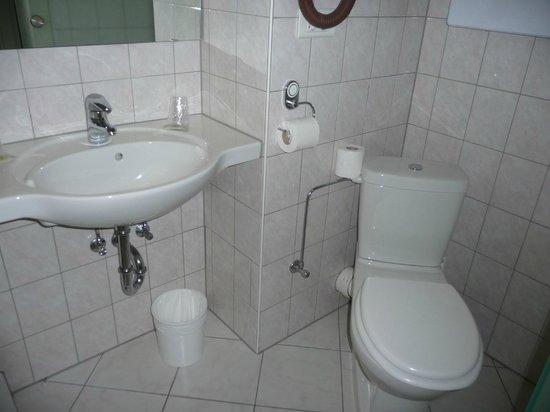 Hotel la Diligence : salle de douche